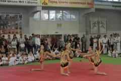 спорт8