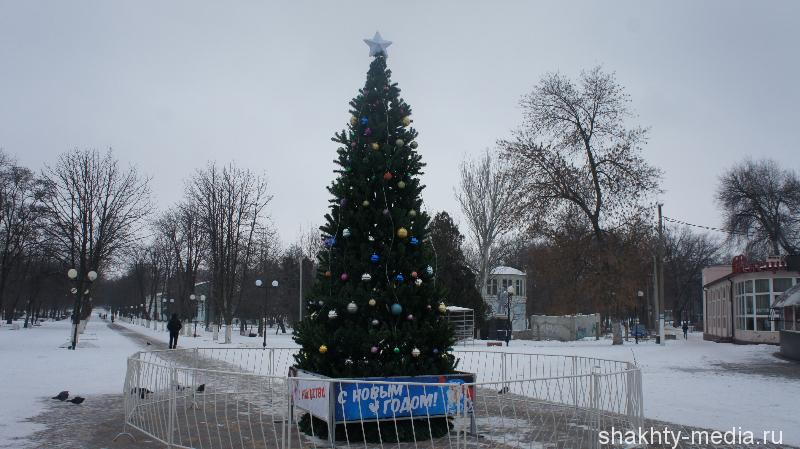 В Александровском парке г.Шахты установили новогднюю елку