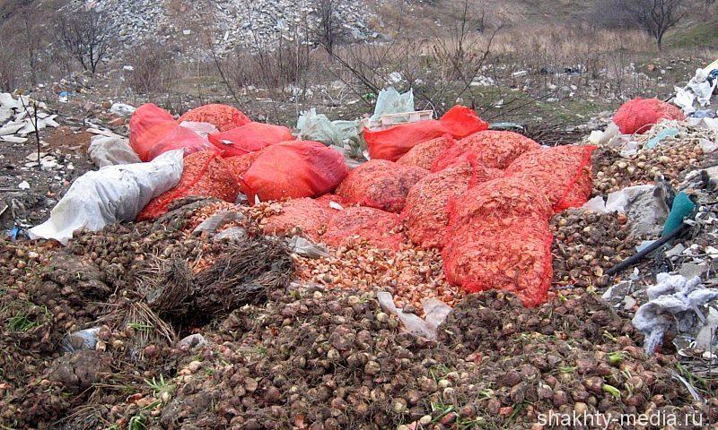 Восемь мусороперерабатывающих комплексов построят в Ростовской области