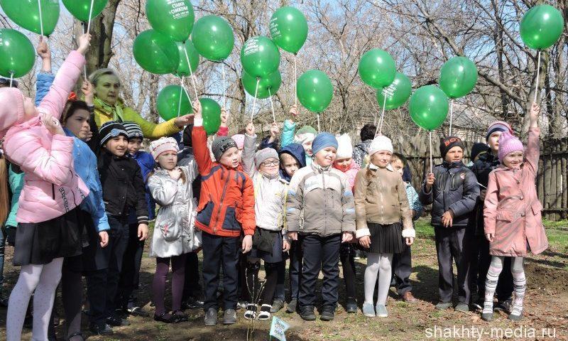В школе №28 г. Шахты провели акцию «Посади дерево»