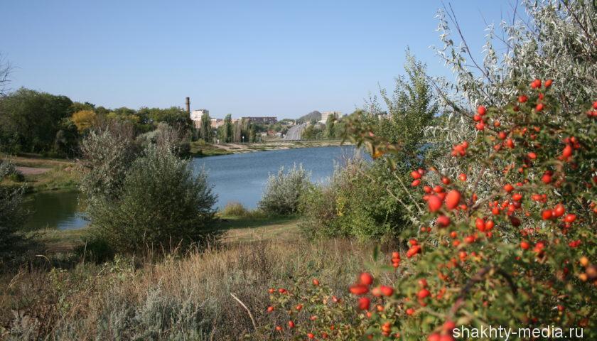 С начала года земельные участки получили более тысячи многодетных семей Ростовской области