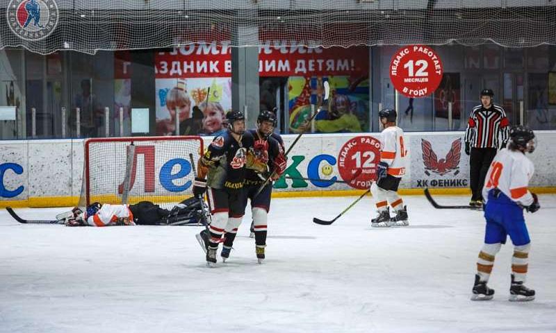 Шахтинская хоккейная команда «Снейк» стала победителем отборочного этапа