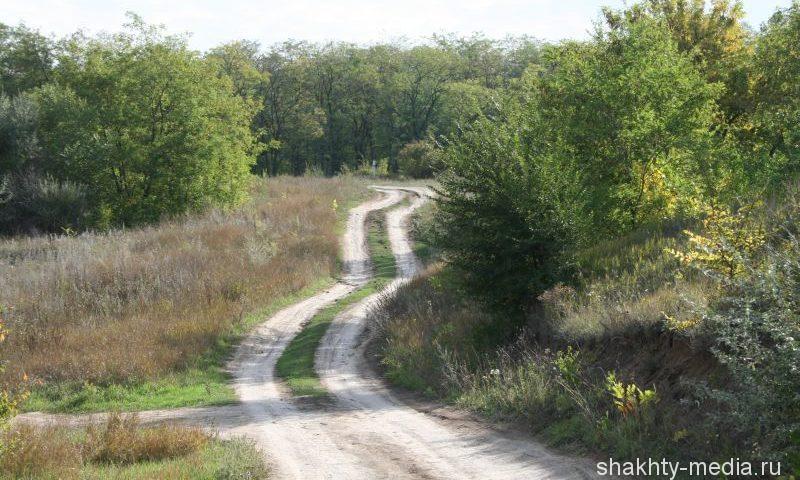 В Ростовской области действует режим ограничения пребывания граждан в лесах