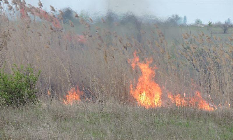 В Шахтах в ближайшие трое суток сохранится чрезвычайная пожароопасность