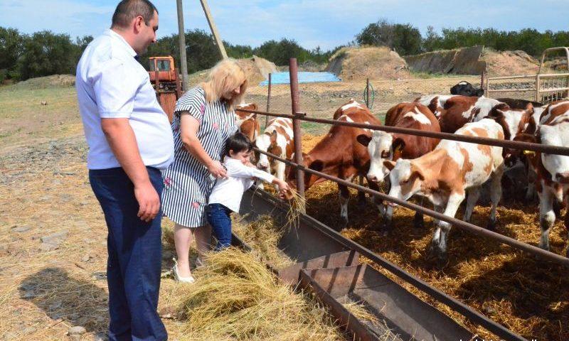 Современная молочная ферма открылась в хуторе Ведерников
