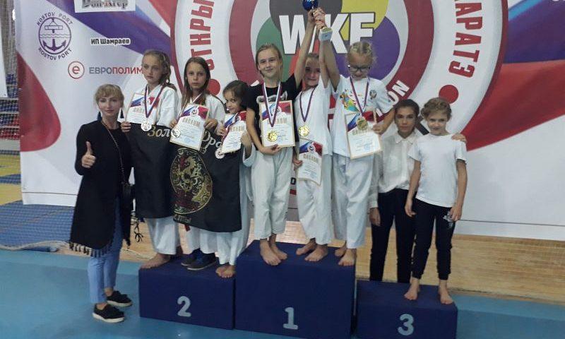 Шахтинские каратисты привезли с соревнований «Кубок пересвета» 17 медалей