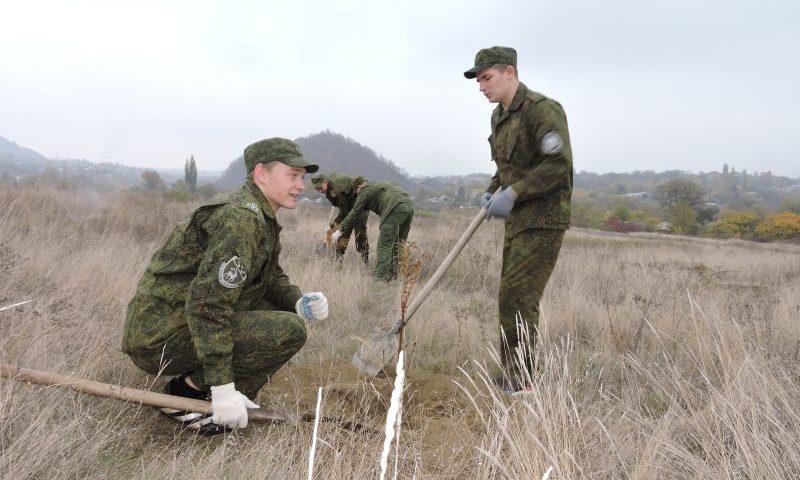 19 октября на территории Ростовской области пройдет осенний День древонасаждений