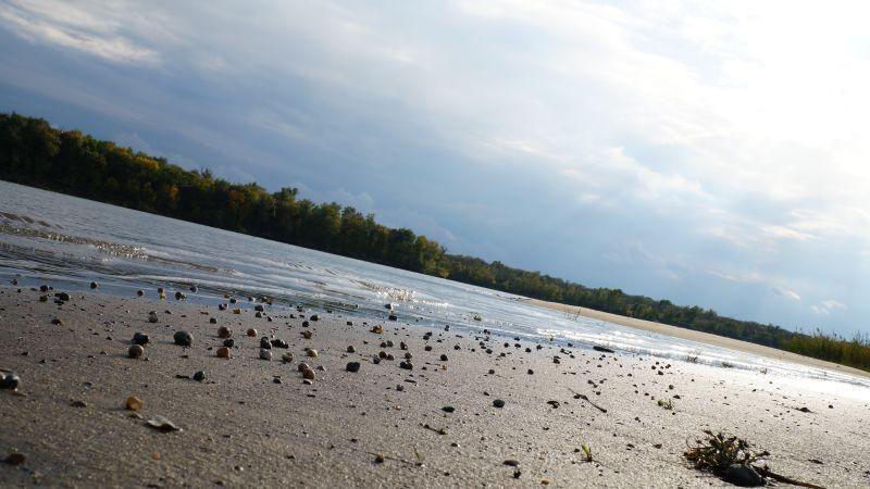 Комплексную государственную программу по оздоровлению реки Дон и его бассейна разработают на федеральном уровне