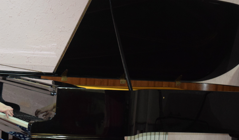 Шахтинские музыканты могут посетить мастер-класс французского пианиста Максима Зекини