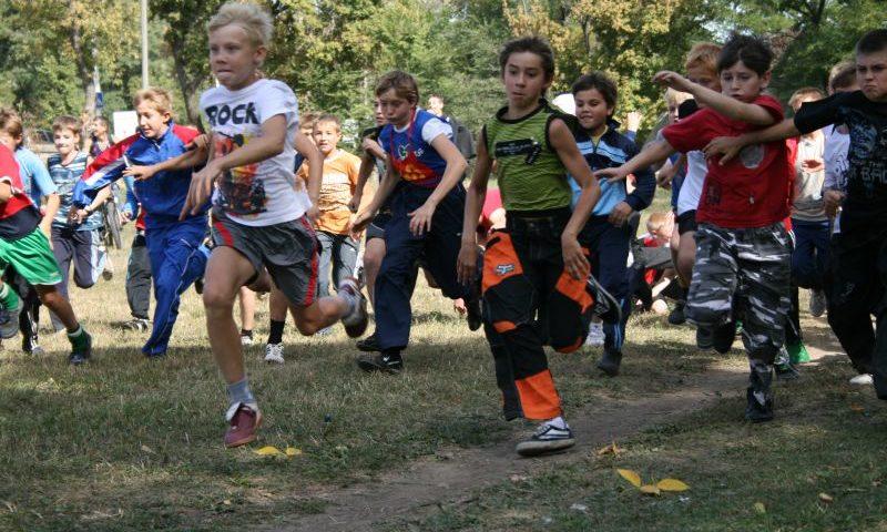 Шахтинские школьники примут участие в III-м этапе спартакиады школьников Ростовской области