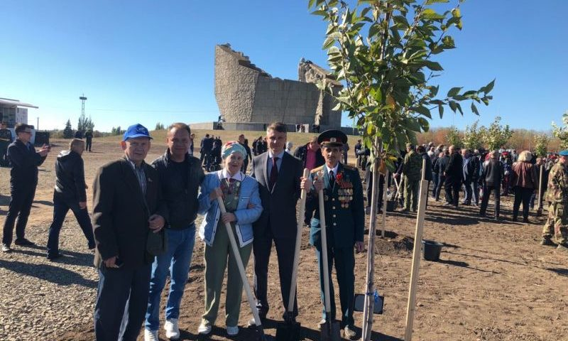Шахтинцы посадили свое дерево на Самбекских высотах