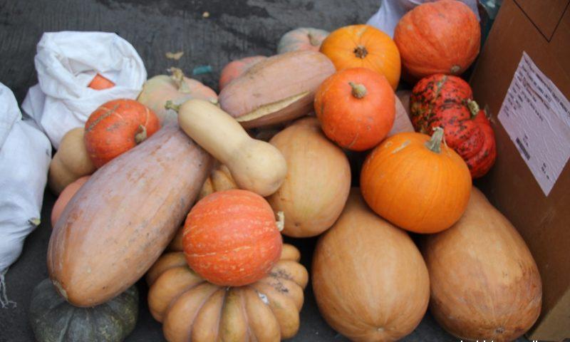 26 октября в Шахтах пройдет ярмарка «выходного дня»