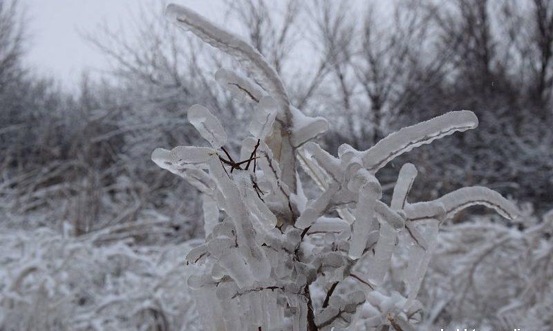 Во время вчерашней непогоды на Дону в снежном плену оказались около 400 человек