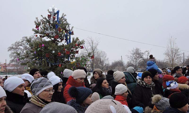 В поселке Фрунзе города Шахты открылась Елка