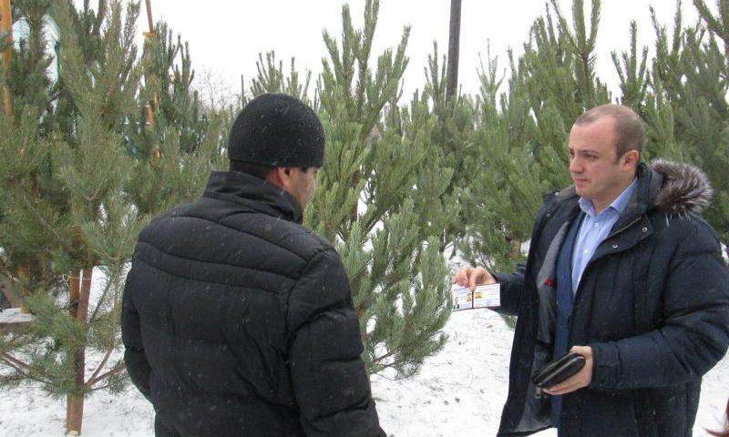 Когда елки в Шахтах станут палками?