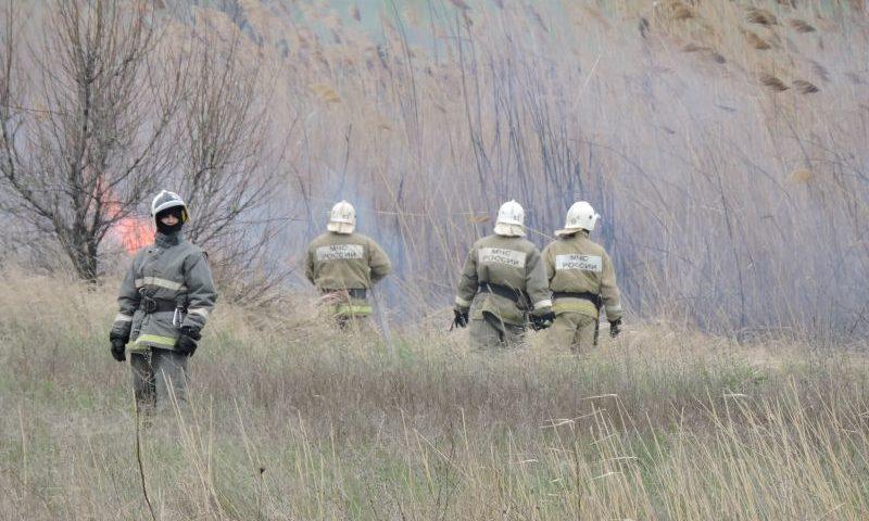 В Ростовской области запрещено выжигание сухой растительности