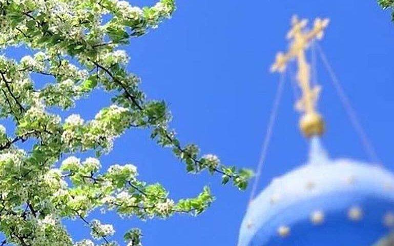 Дончане смогут увидеть богослужение в Вербное воскресенье в режиме онлайн