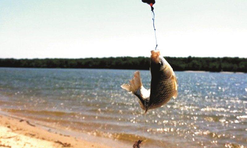 Во время грозы на Дону спасли рыбака