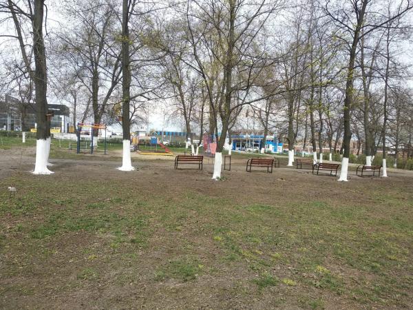 С 16 марта в Шахтах стартует месячник по санитарной уборке города
