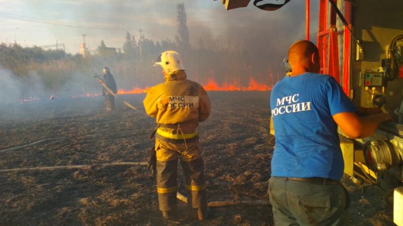 В Донском регионе в 2019 году обучение прошли более 600 добровольцев