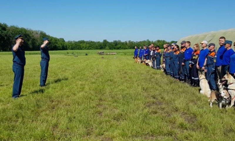 Кинологические расчеты МЧС России Южного федерального округа проходят сертификационные испытания в Ростовской области