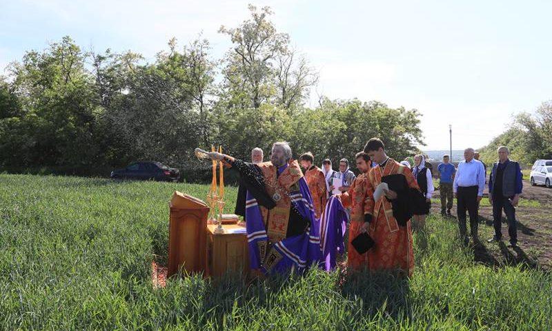 Преосвященнейший епископ Симон вместе с фермерами помолился о благополучии урожая в полях Донского края