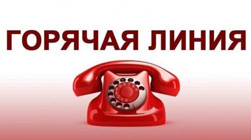 Для пострадавших при пожаре на Центральном рынке г.Шахты работает телефон «горячей линии»