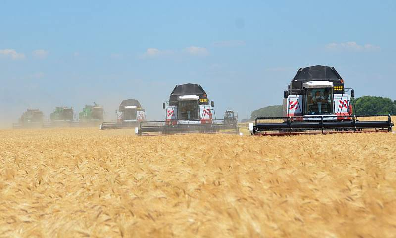 Жатва 2019: есть первый миллион тонн донского зерна!