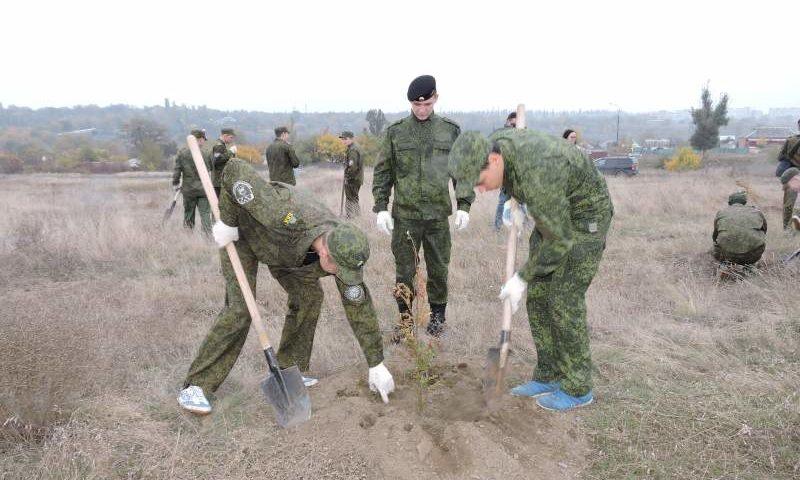 Осенняя акция «Живи, лес!» стартует в Ростовской области