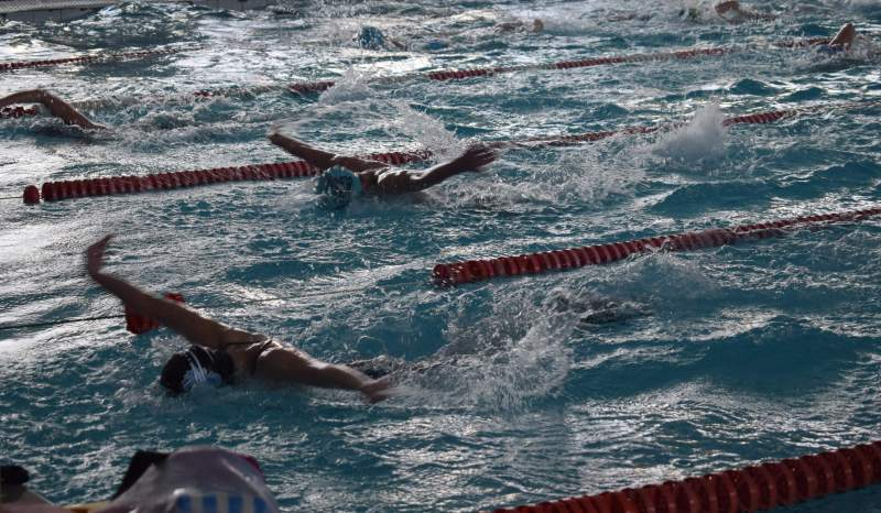 Донские спортсмены завоевали пять медалей на чемпионате мира по плаванию для людей с ограниченными возможностями