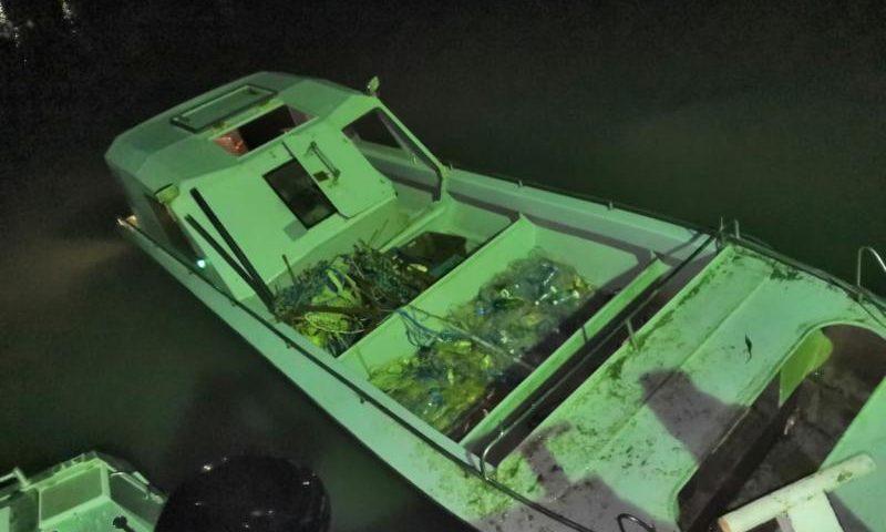 В Ростовской области у браконьеров изъяли рыбу на три миллиона рублей