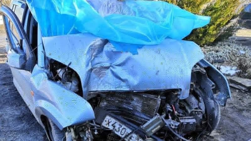 Супруги из Шахт получили серьезные травмы в автоаварии в Белокалитвинском районе