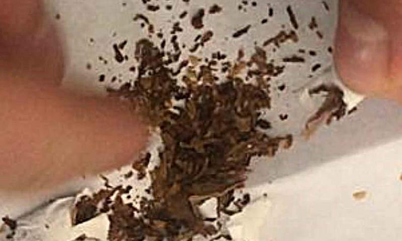 Сигареты с запрещенной добавкой пытались пронести в исправительную колонию г. Шахты