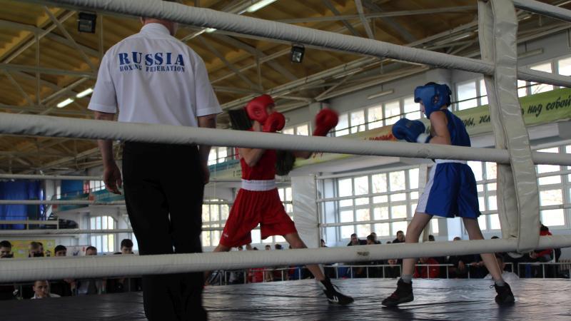 В Шахтах стартовало Первенство области по боксу