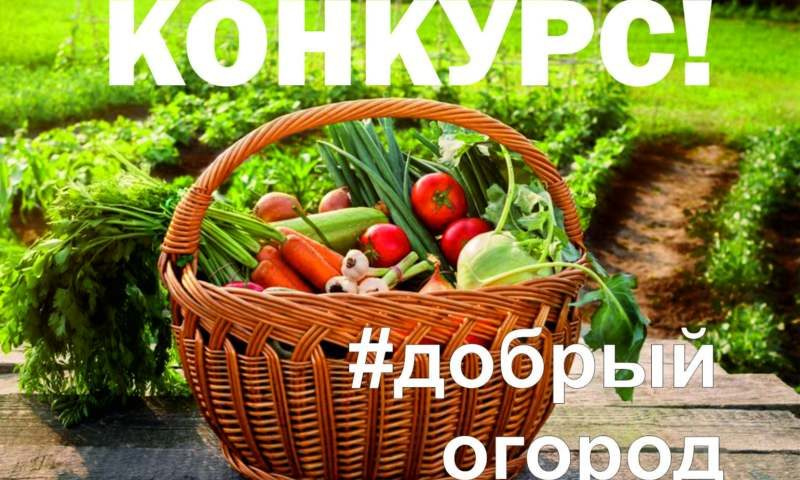 #Добрые огороды против вируса