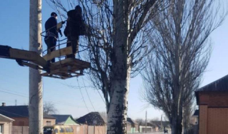 На улице Шишкина г.Шахты убрали упавшее дерево