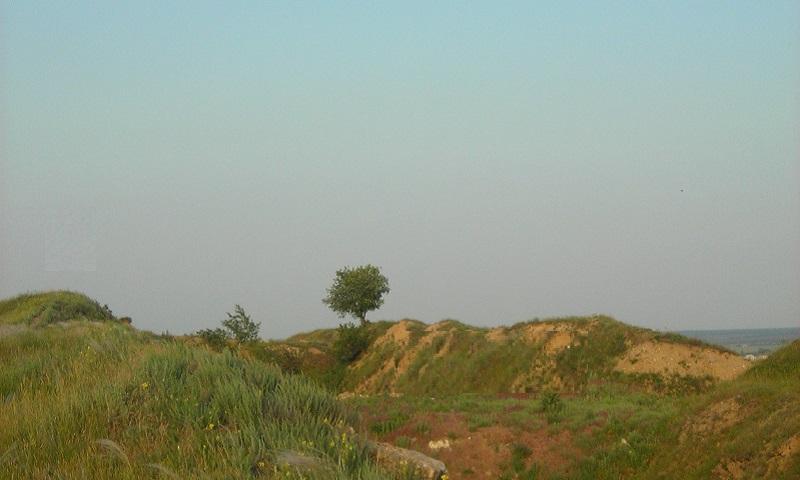 В Шахтах прогнозируют теплую облачную погоду