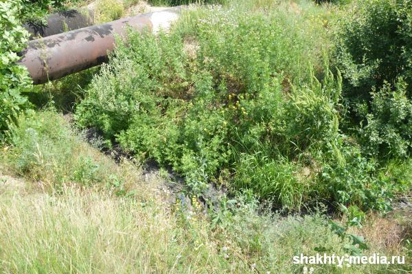 Порыв канализационного коллектора, который  угрожал пруду поселка ХБК г. Шахты, устранен