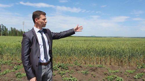 Алабуга-на-Дону: в Шахтах появится индустриальный парк