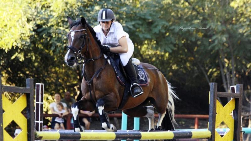 В Шахтах прошел чемпионат по конному спорту