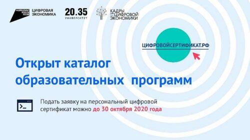 Дончане могут бесплатно повысить свою квалификацию по востребованным цифровым профессиям